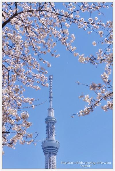 Sumida01