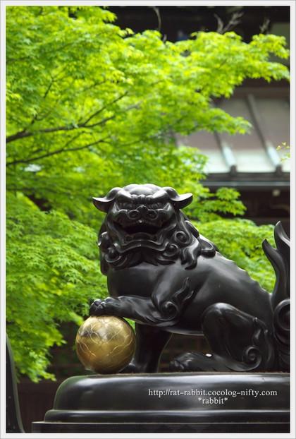 Goutokuji12_4
