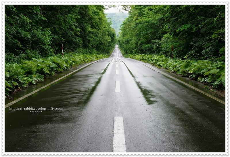 Road01r