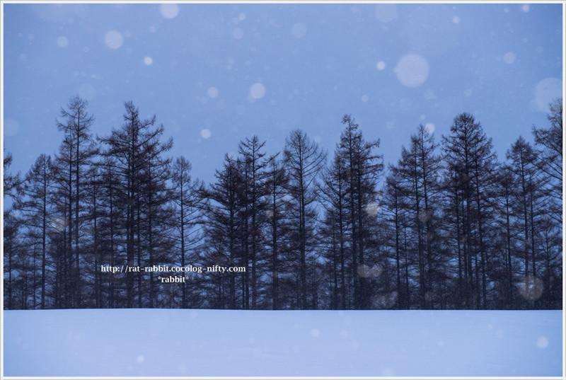 Snowfall03