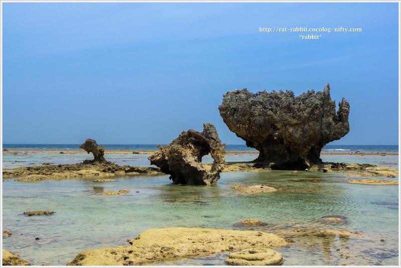 Seashore01